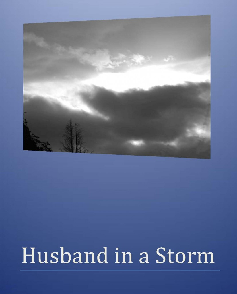 Husband in a Storm