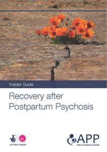 Recovery After Postpartum Psychosis Insider Guide